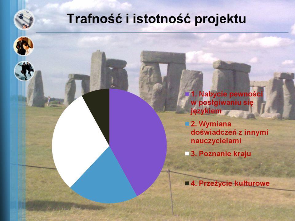 Trafność i istotność projektu