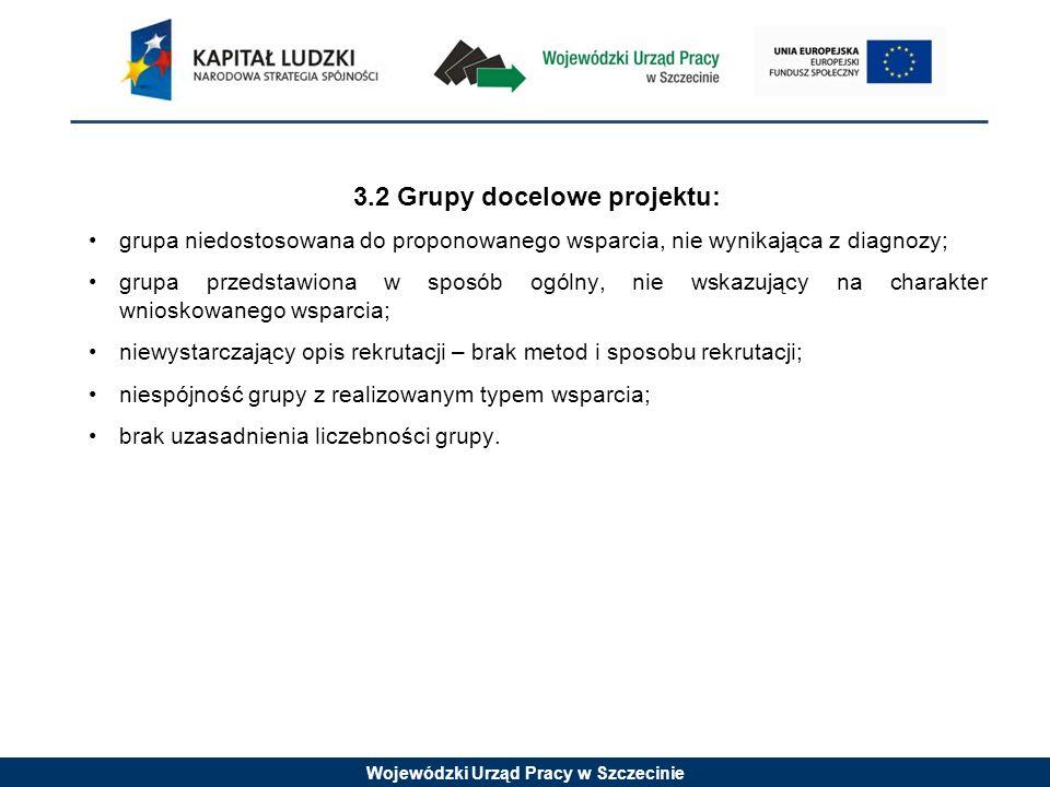 Wojewódzki Urząd Pracy w Szczecinie 3.2 Grupy docelowe projektu: grupa niedostosowana do proponowanego wsparcia, nie wynikająca z diagnozy; grupa prze