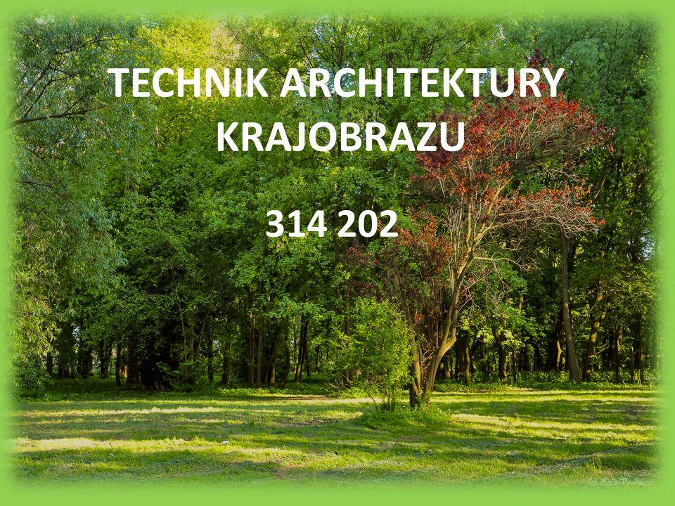 TECHNIK ARCHITEKTURY KRAJOBRAZU 314 202