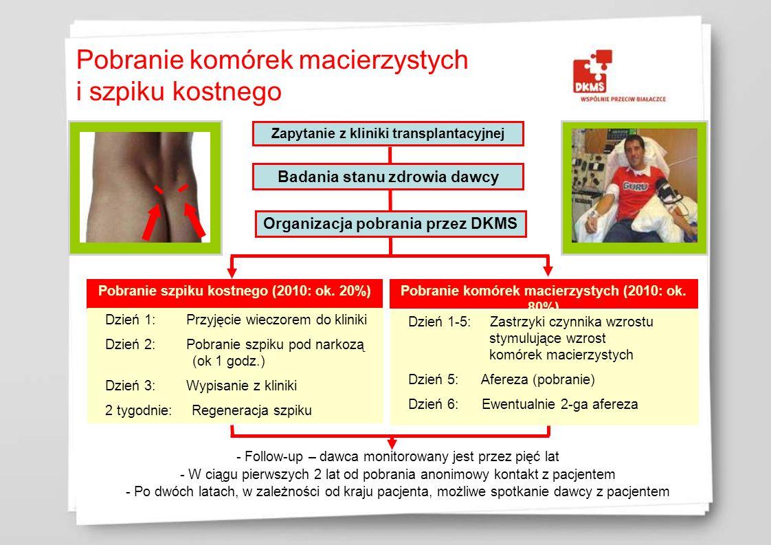 Zapytanie z kliniki transplantacyjnej Badania stanu zdrowia dawcy Organizacja pobrania przez DKMS Pobranie szpiku kostnego (2010: ok. 20%) Pobranie ko