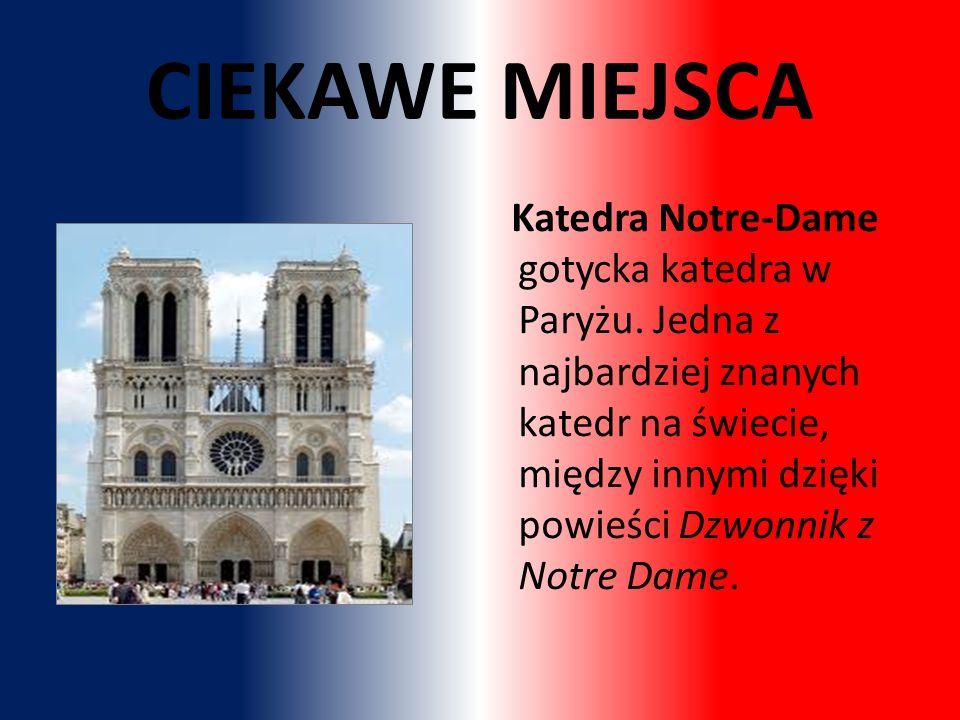 Katedra Notre-Dame gotycka katedra w Paryżu.