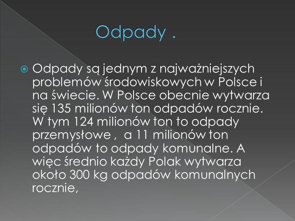 Odpady są jednym z najważniejszych problemów środowiskowych w Polsce i na świecie. W Polsce obecnie wytwarza się 135 milionów ton odpadów rocznie. W t