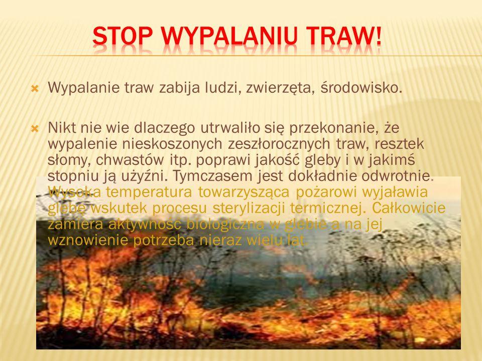 6. Nie rozpalanie ognisk w lasach lub na polach w czasie podwyższonego zagrożenia pożarowego.
