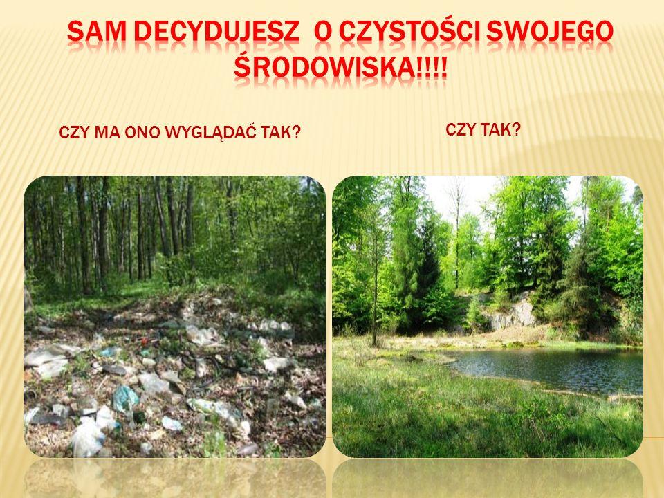 8.Nie niszczymy przyrody, gatunków chronionych roślin i zwierząt