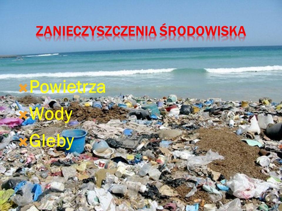 9. Dbanie o czystość środowiska, nie wyrzucanie śmieci na ulicę, a także segregowanie odpadów.