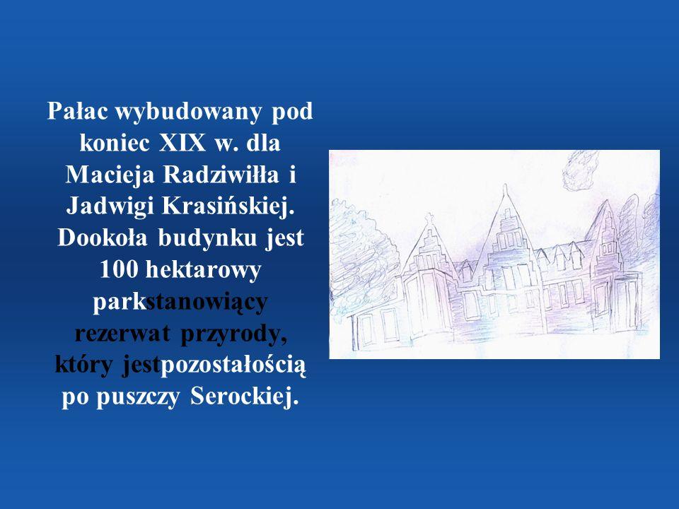 Pałac wybudowany pod koniec XIX w. dla Macieja Radziwiłła i Jadwigi Krasińskiej. Dookoła budynku jest 100 hektarowy parkstanowiący rezerwat przyrody,