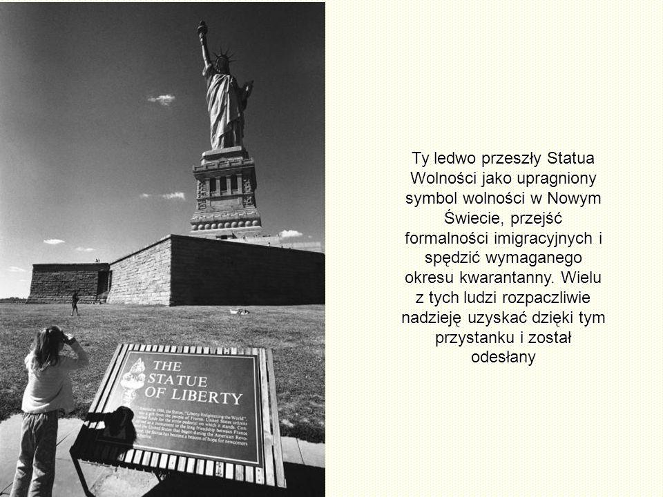 Stamtąd widać także Ellis Island, daleko od Liberty Island około 1 km. Między 1892 i 1954r. Statua Wolności zwabiła około 12.000.000 imigrantów