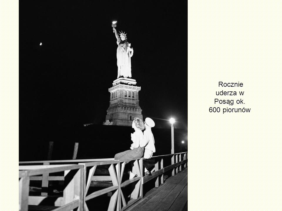 W czasie budowy w Paryżu posąg był koloru ciemnej miedzi. Przez następne 20 lat, otrzymał swoją zieloną patyną. Teraz przed dalszą korozją chroniony j