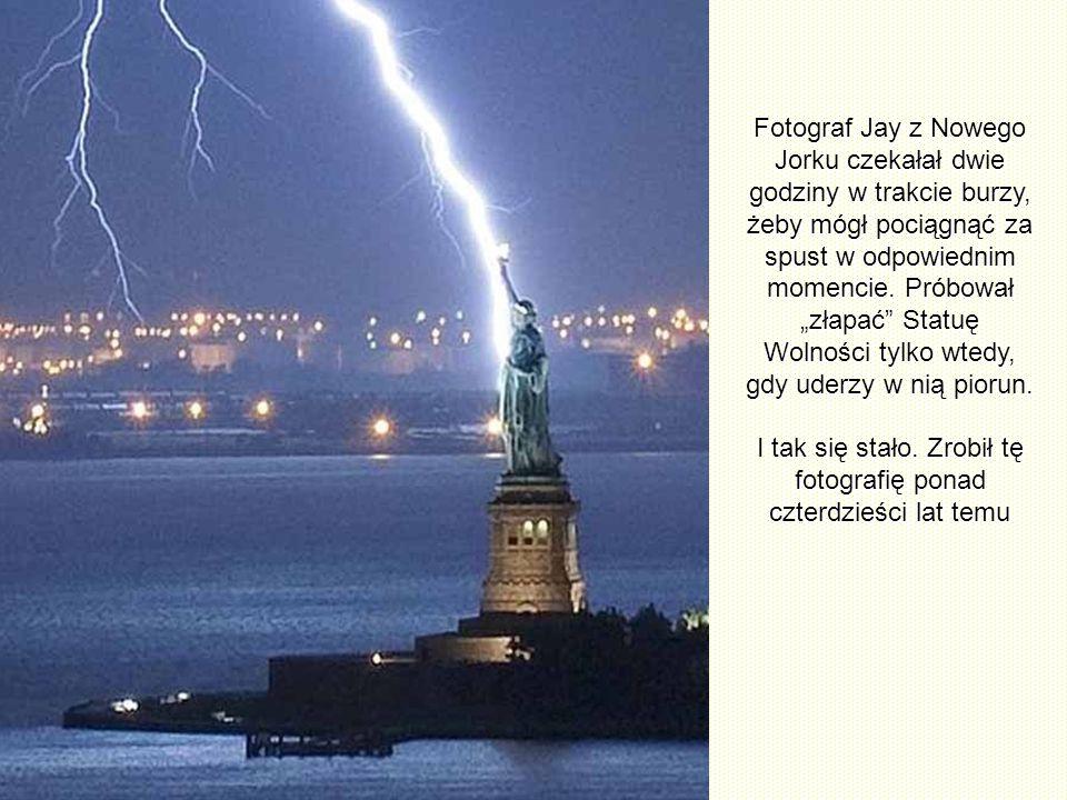 Rocznie uderza w Posąg ok. 600 piorunów