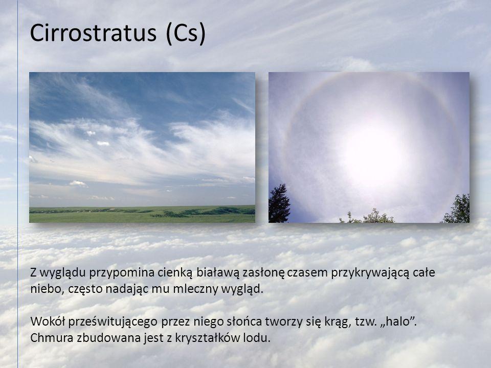 Cirrostratus (Cs) Z wyglądu przypomina cienką białawą zasłonę czasem przykrywającą całe niebo, często nadając mu mleczny wygląd. Wokół prześwitującego