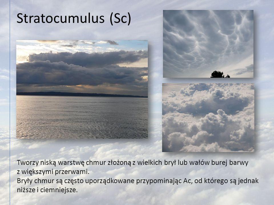 Stratocumulus (Sc) Tworzy niską warstwę chmur złożoną z wielkich brył lub wałów burej barwy z większymi przerwami. Bryły chmur są często uporządkowane