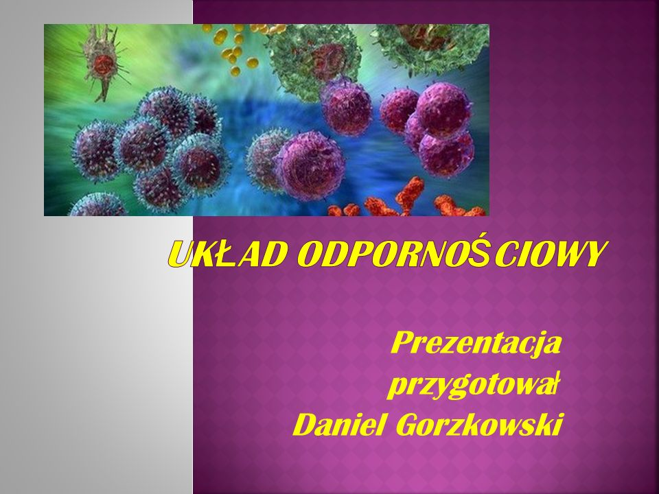 Prezentacja przygotowa ł Daniel Gorzkowski