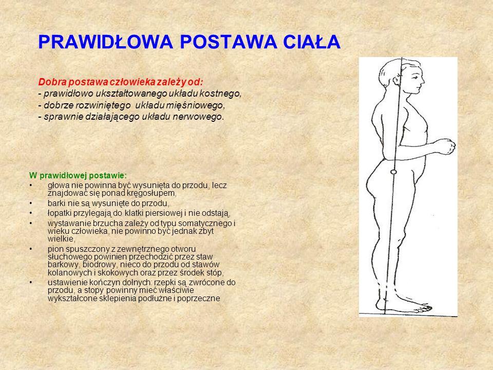 PRAWIDŁOWA POSTAWA CIAŁA Dobra postawa człowieka zależy od: - prawidłowo ukształtowanego układu kostnego, - dobrze rozwiniętego układu mięśniowego, -