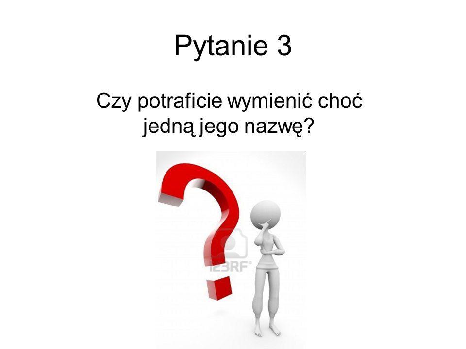 Pytanie 4 Jak myślicie, gdzie można szukać informacji o takich programach?