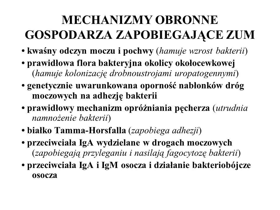 MECHANIZMY OBRONNE GOSPODARZA ZAPOBIEGAJĄCE ZUM kwaśny odczyn moczu i pochwy (hamuje wzrost bakterii) prawidłowa flora bakteryjna okolicy okołocewkowej (hamuje kolonizację drobnoustrojami uropatogennymi) genetycznie uwarunkowana oporność nabłonków dróg moczowych na adhezję bakterii prawidłowy mechanizm opróżniania pęcherza (utrudnia namnożenie bakterii) białko Tamma-Horsfalla (zapobiega adhezji) przeciwciała IgA wydzielane w drogach moczowych (zapobiegają przyleganiu i nasilają fagocytozę bakterii) przeciwciała IgA i IgM osocza i działanie bakteriobójcze osocza