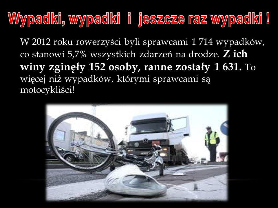 W 2012 roku rowerzyści byli sprawcami 1 714 wypadków, co stanowi 5,7% wszystkich zdarzeń na drodze.