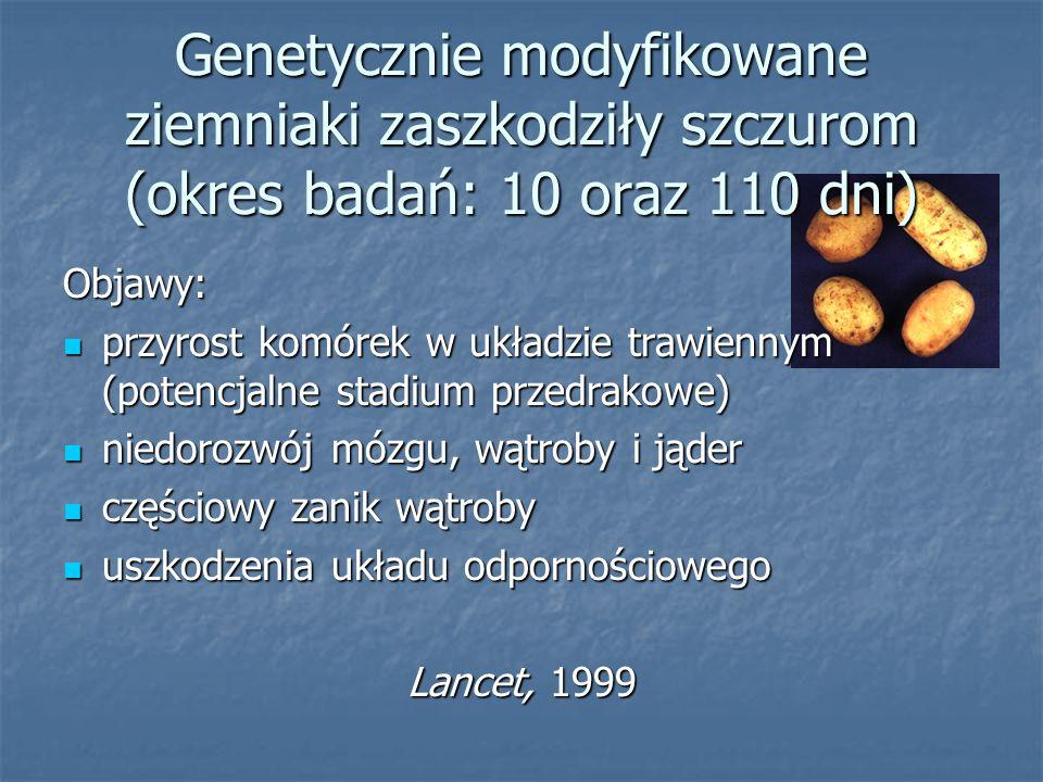 Genetycznie modyfikowane ziemniaki zaszkodziły szczurom (okres badań: 10 oraz 110 dni) Objawy: przyrost komórek w układzie trawiennym (potencjalne sta