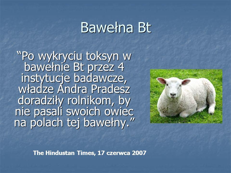 Bawełna Bt Po wykryciu toksyn w bawełnie Bt przez 4 instytucje badawcze, władze Andra Pradesz doradziły rolnikom, by nie pasali swoich owiec na polach