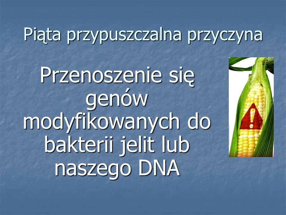 Piąta przypuszczalna przyczyna Przenoszenie się genów modyfikowanych do bakterii jelit lub naszego DNA