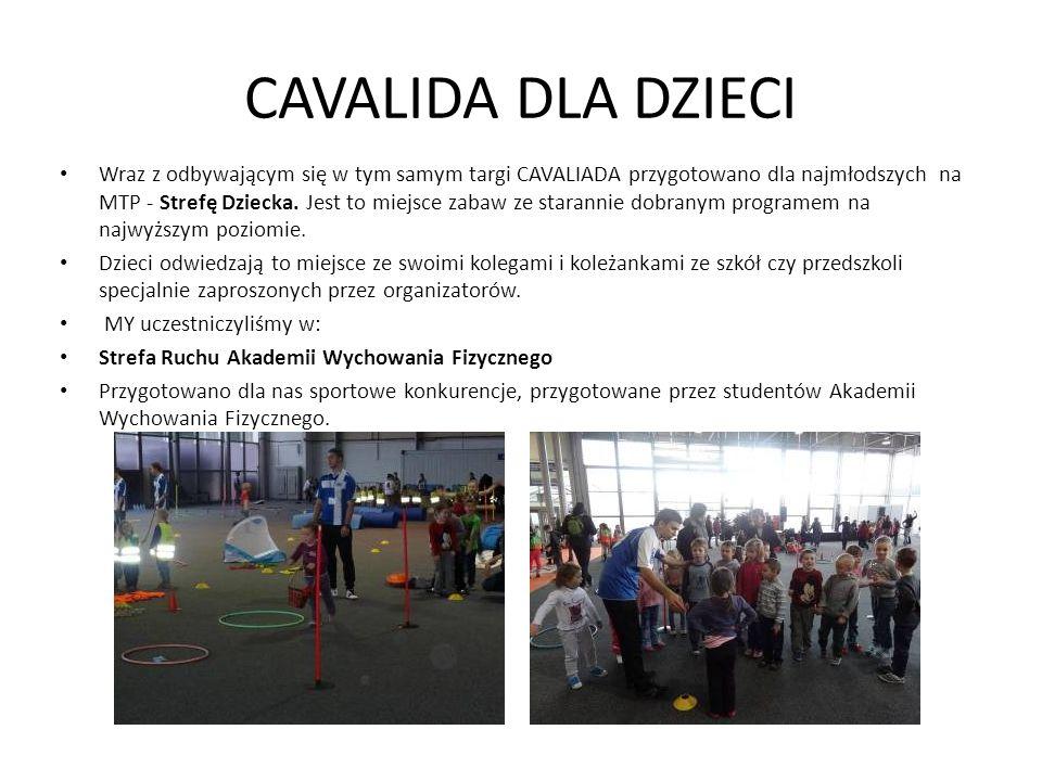 Wraz z odbywającym się w tym samym targi CAVALIADA przygotowano dla najmłodszych na MTP - Strefę Dziecka.