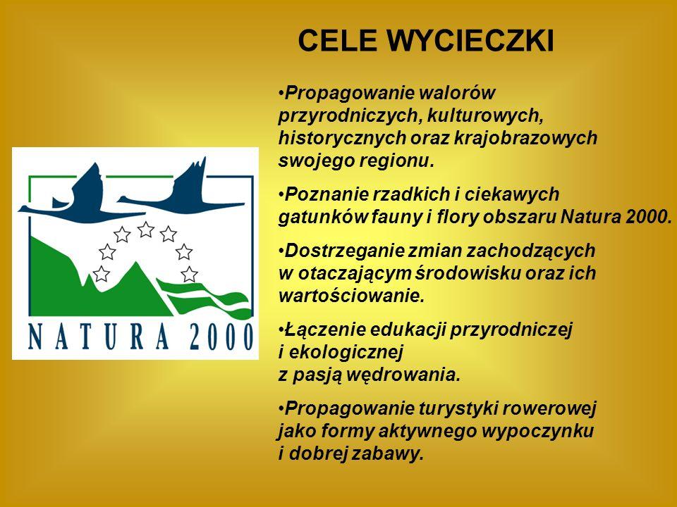 TRASA WYCIECZKI I PRZYSTANKI 1.Jaworowy Jar na Stanisławówce 2.