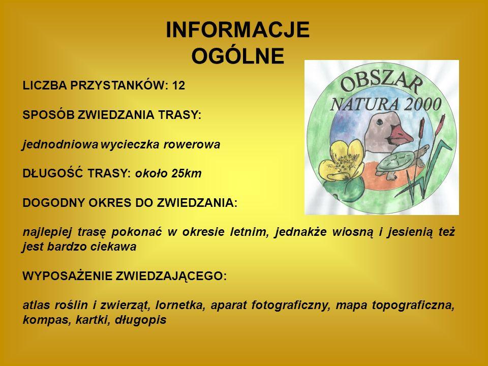 ETAPY WYCIECZKI PRZYSTANEK 1.