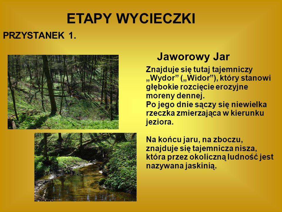 ETAPY WYCIECZKI PRZYSTANEK 1. Jaworowy Jar Znajduje się tutaj tajemniczy Wydor (Widor), który stanowi głębokie rozcięcie erozyjne moreny dennej. Po je
