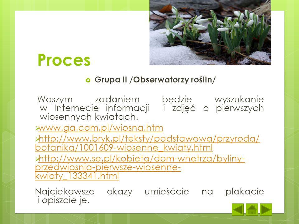 Proces Grupa II /Obserwatorzy roślin/ Waszym zadaniem będzie wyszukanie w Internecie informacji i zdjęć o pierwszych wiosennych kwiatach. www.ga.com.p