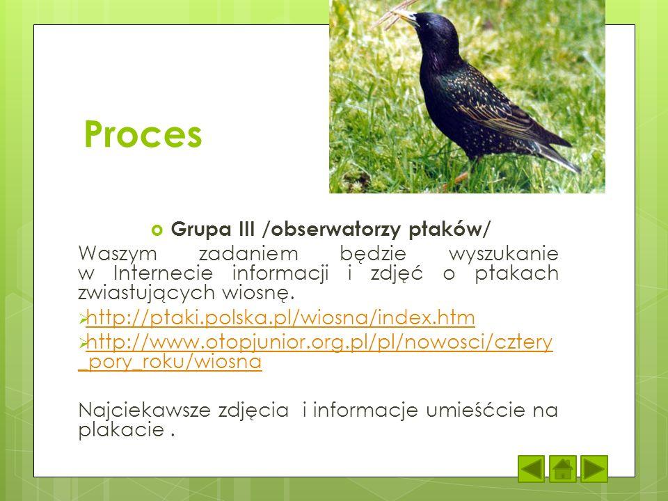 Proces Grupa III /obserwatorzy ptaków/ Waszym zadaniem będzie wyszukanie w Internecie informacji i zdjęć o ptakach zwiastujących wiosnę. http://ptaki.