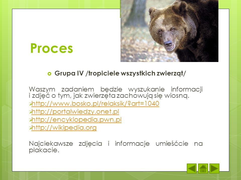 Proces Grupa IV /tropiciele wszystkich zwierząt/ Waszym zadaniem będzie wyszukanie informacji i zdjęć o tym, jak zwierzęta zachowują się wiosną. http: