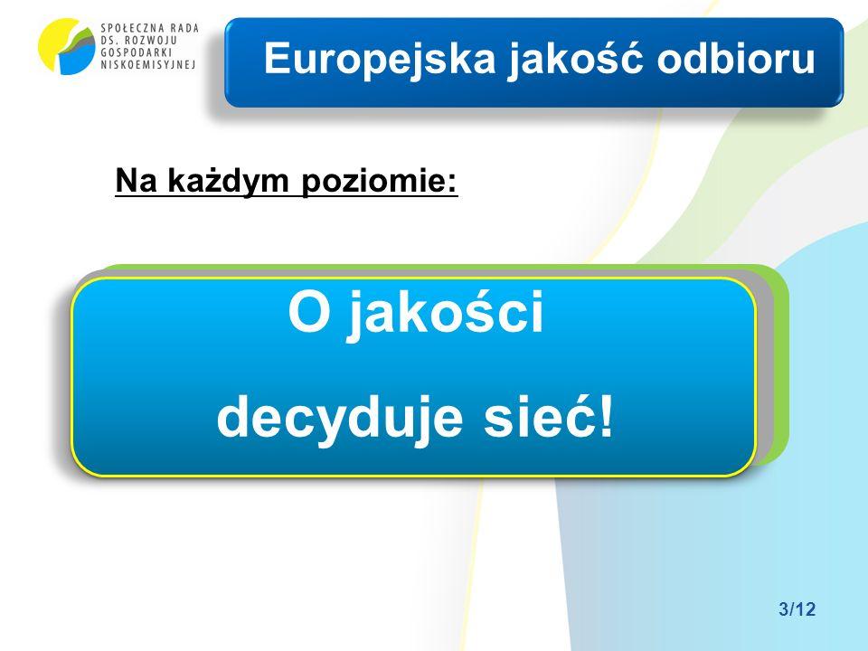 Na każdym poziomie: Rozbudowa sieci przesyłowych Modernizacja i rozbudowa sieci dystrybucyjnych Rozwój mikro sieci prosumenckich Europejska jakość odb