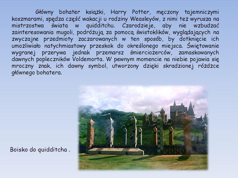 Główny bohater książki, Harry Potter, męczony tajemniczymi koszmarami, spędza część wakacji u rodziny Weasleyów, z nimi też wyrusza na mistrzostwa świ