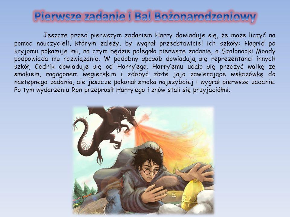 Jeszcze przed pierwszym zadaniem Harry dowiaduje się, że może liczyć na pomoc nauczycieli, którym zależy, by wygrał przedstawiciel ich szkoły: Hagrid
