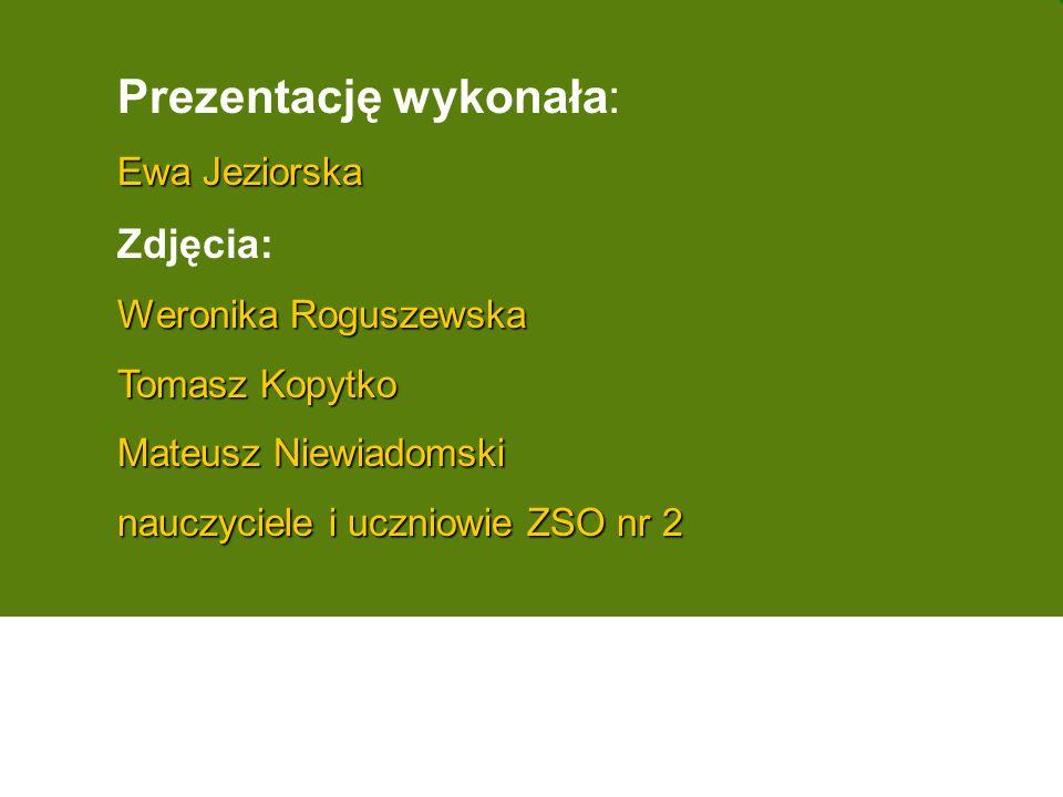Prezentację wykonała: Ewa Jeziorska Zdjęcia: Weronika Roguszewska Tomasz Kopytko Mateusz Niewiadomski nauczyciele i uczniowie ZSO nr 2