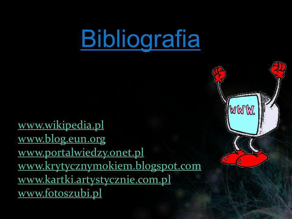 www.wikipedia.pl www.blog.eun.org www.portalwiedzy.onet.pl www.krytycznymokiem.blogspot.com www.kartki.artystycznie.com.pl www.fotoszubi.plBibliografi