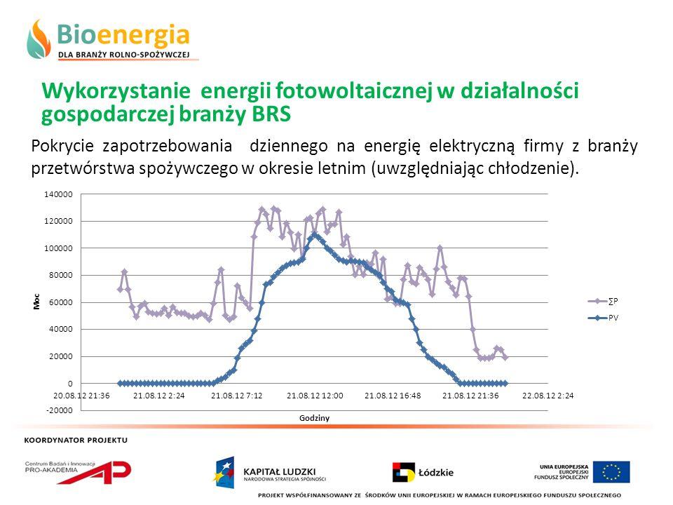 Wykorzystanie energii fotowoltaicznej w działalności gospodarczej branży BRS Pokrycie zapotrzebowania dziennego na energię elektryczną firmy z branży