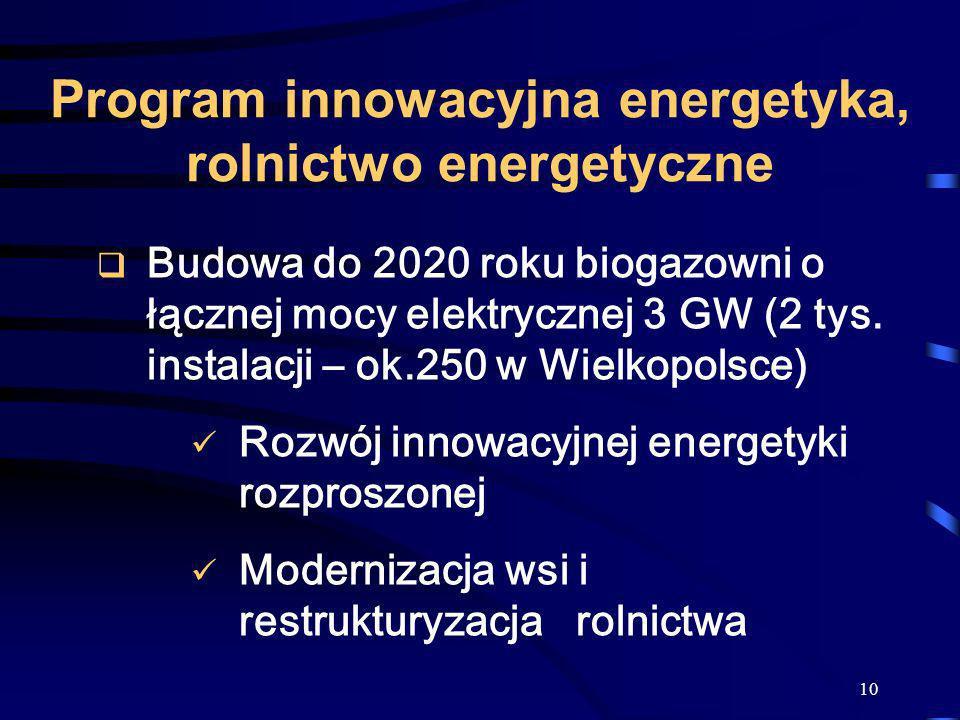 10 Program innowacyjna energetyka, rolnictwo energetyczne Budowa do 2020 roku biogazowni o łącznej mocy elektrycznej 3 GW (2 tys. instalacji – ok.250
