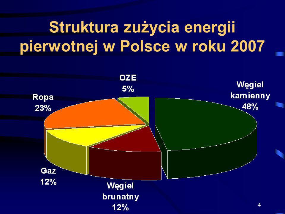 4 Struktura zużycia energii pierwotnej w Polsce w roku 2007