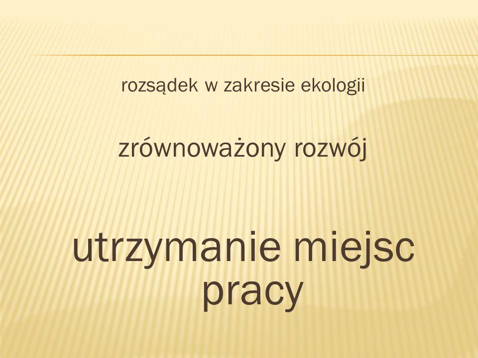 Prof.dr hab. Michał Kleiber – Prezes Polskiej Akademii Nauk Prof.
