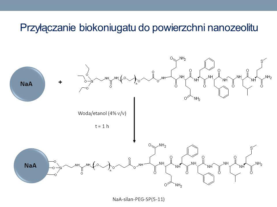 Przyłączanie biokoniugatu do powierzchni nanozeolitu NaA + Woda/etanol (4% v/v) t = 1 h NaA-silan-PEG-SP(5-11)
