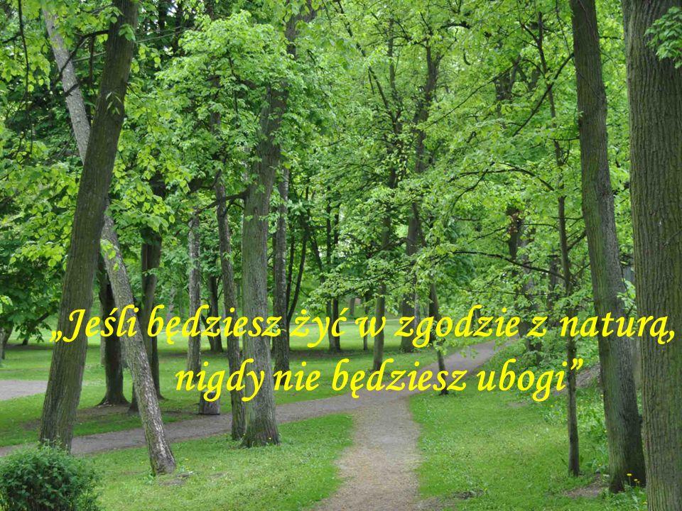 Jeśli będziesz żyć w zgodzie z naturą, nigdy nie będziesz ubogi