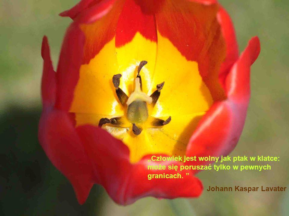 Człowiek jest wolny jak ptak w klatce: może się poruszać tylko w pewnych granicach. Johann Kaspar Lavater