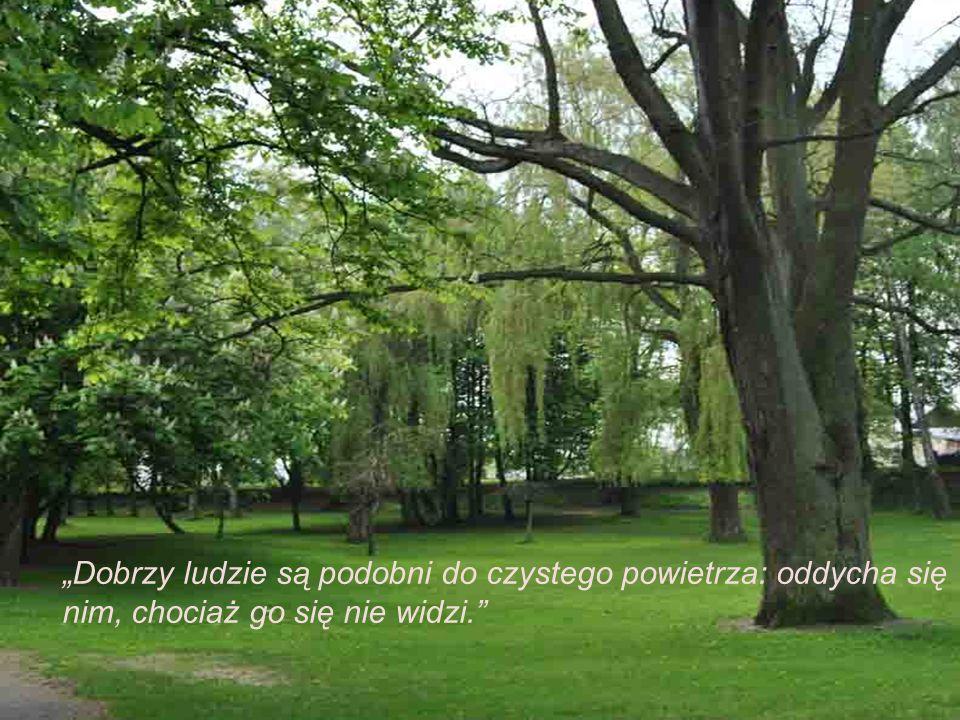 Pokój na Ziemi nie może być osiągnięty bez pokoju z przyrodą.