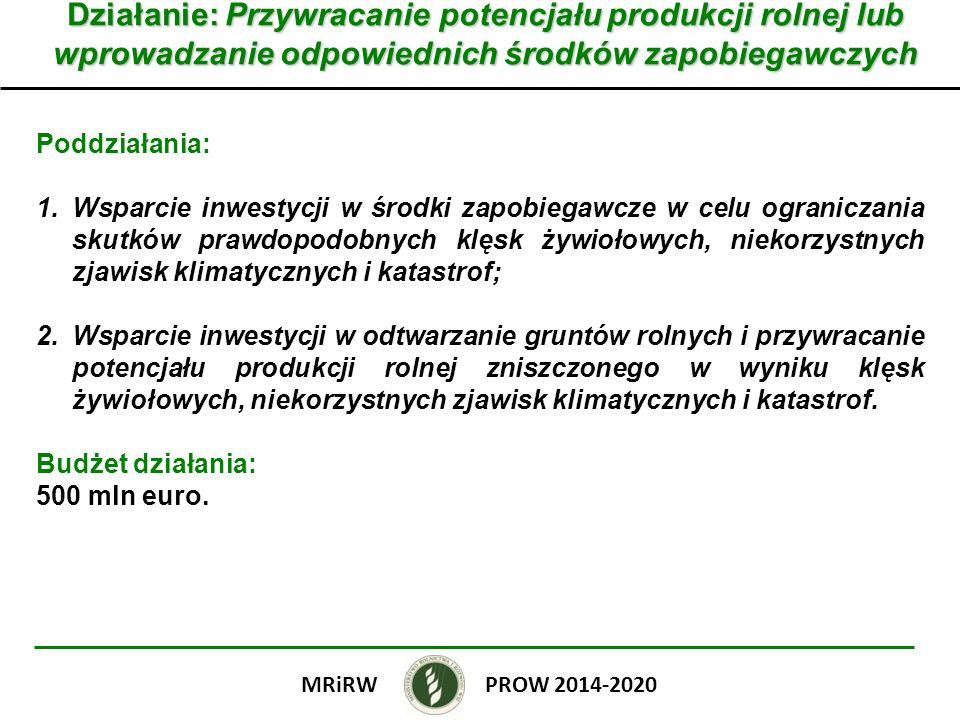 Działanie: Przywracanie potencjału produkcji rolnej lub wprowadzanie odpowiednich środków zapobiegawczych Poddziałania: 1.Wsparcie inwestycji w środki