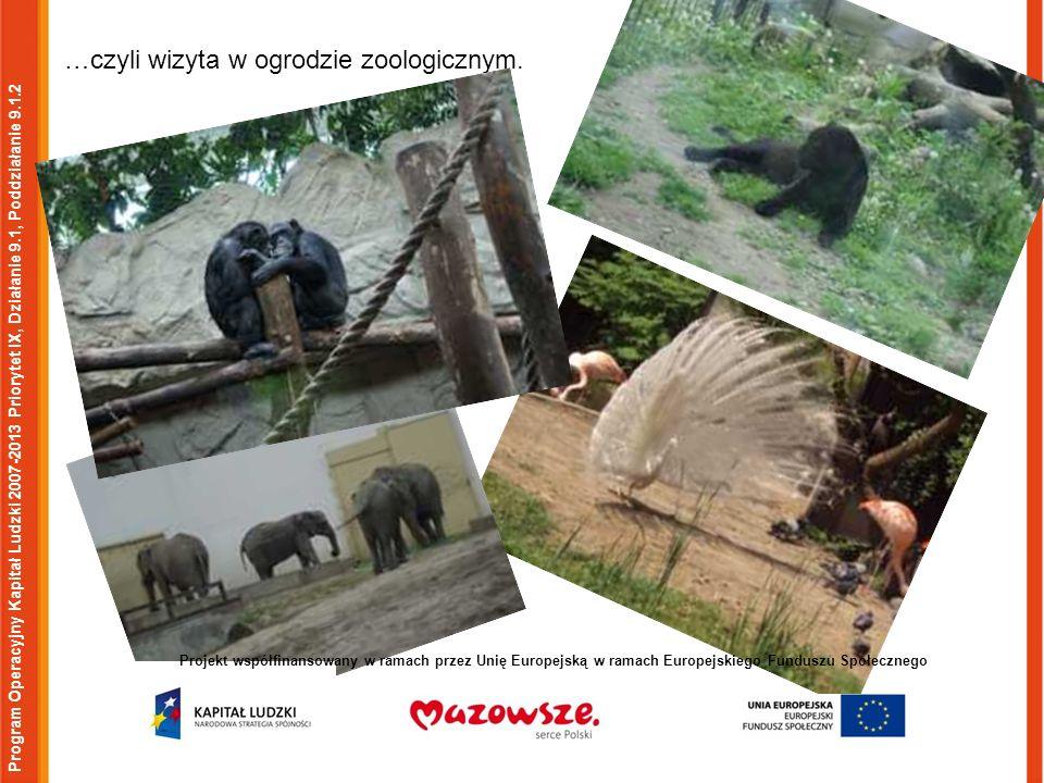 Program Operacyjny Kapitał Ludzki 2007-2013 Priorytet IX, Działanie 9.1, Poddziałanie 9.1.2 Projekt współfinansowany w ramach przez Unię Europejską w ramach Europejskiego Funduszu Społecznego …czyli wizyta w ogrodzie zoologicznym.