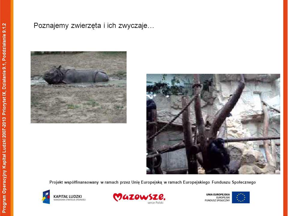 Program Operacyjny Kapitał Ludzki 2007-2013 Priorytet IX, Działanie 9.1, Poddziałanie 9.1.2 Projekt współfinansowany w ramach przez Unię Europejską w ramach Europejskiego Funduszu Społecznego Poznajemy zwierzęta i ich zwyczaje…