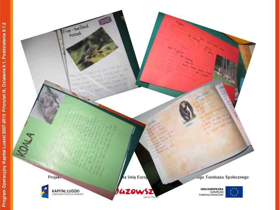 Program Operacyjny Kapitał Ludzki 2007-2013 Priorytet IX, Działanie 9.1, Poddziałanie 9.1.2 Projekt współfinansowany w ramach przez Unię Europejską w ramach Europejskiego Funduszu Społecznego