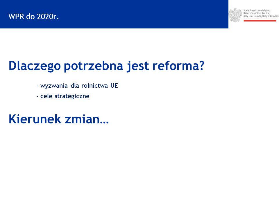 WPR do 2020r.Dlaczego potrzebna jest reforma.