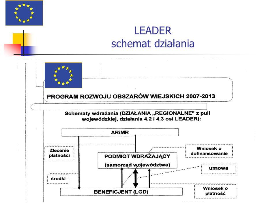 LEADER schemat działania