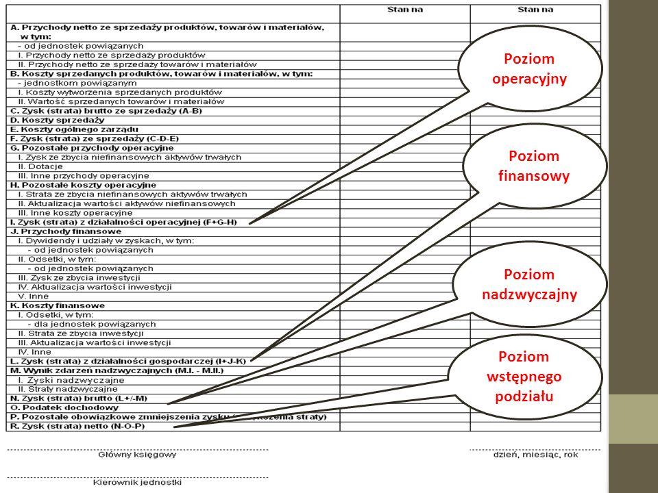 Poziom operacyjny Podstawowy poziom spółki; Realizujący założenia, do którego firma została powołania; Zysk / strata na działalności operacyjnej ukazuje pozycje produktów przedsiębiorstwa na rynku; Pozostała działalność operacyjna to pośredni efekt podejmowanych czynności przez spółkę; Pozostała działalność zabezpiecza firmę przed ryzykiem gospodarczym czy stanowi osłonę zysku przed podziałem.